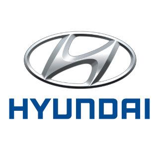 Hyundai Touch Up Paint / Scratch & Paint Repair Kit