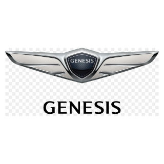 Genesis Touch Up Paint / Scratch Repair Kit