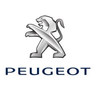 Peugeot Touch Up Paint / Scratch Repair Kit
