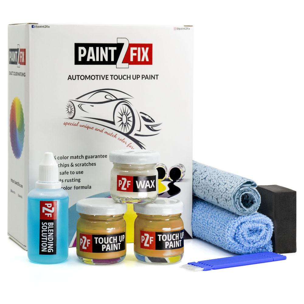 Ford Cyber Orange SB Retouche De Peinture / Kit De Réparation De Rayures