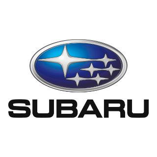 Subaru Touch Up Paint / Scratch Repair Kit