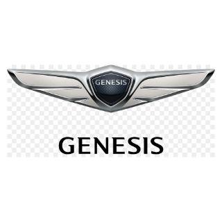 Genesis Touch Up Paint / Scratch & Paint Repair Kit
