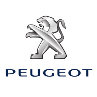 Peugeot Touch Up Paint / Scratch & Paint Repair Kit